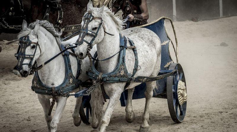 trasero de los caballos romanos