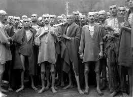 Sólo un idiota niega el Holocausto.