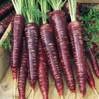 Zanahorias moradas, manipulando alimentos