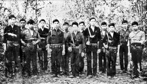 Vietcong Regulares