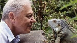 El naturalista David Attenborough, especies