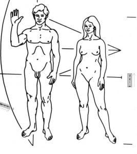 Humanos en Pioneer y Voyager